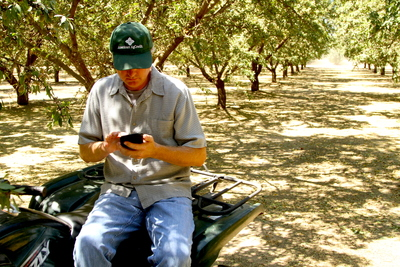 almond farmer using his cell phone