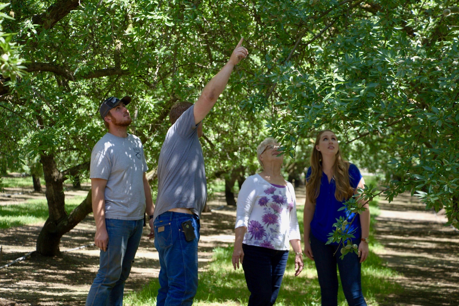 A farming family looking at an almond tree.