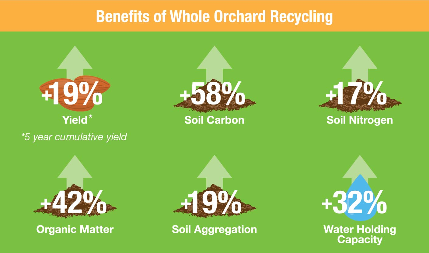 Benefits-of-Whole-Orchard-Recycling_Culumber-Research-2020-01_2.jpg